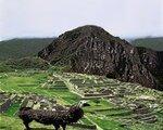 Rundreise Peru und Bolivien erleben