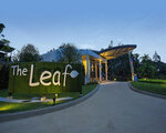 The Leaf on the Sands by