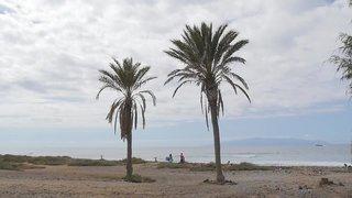 Hotel Alexandre La Siesta Strand