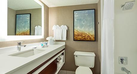 Wyndham Dallas Suites - Park Central Badezimmer