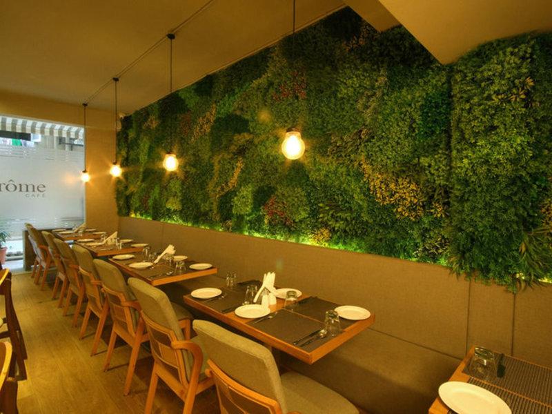 Suncity Apollo Restaurant