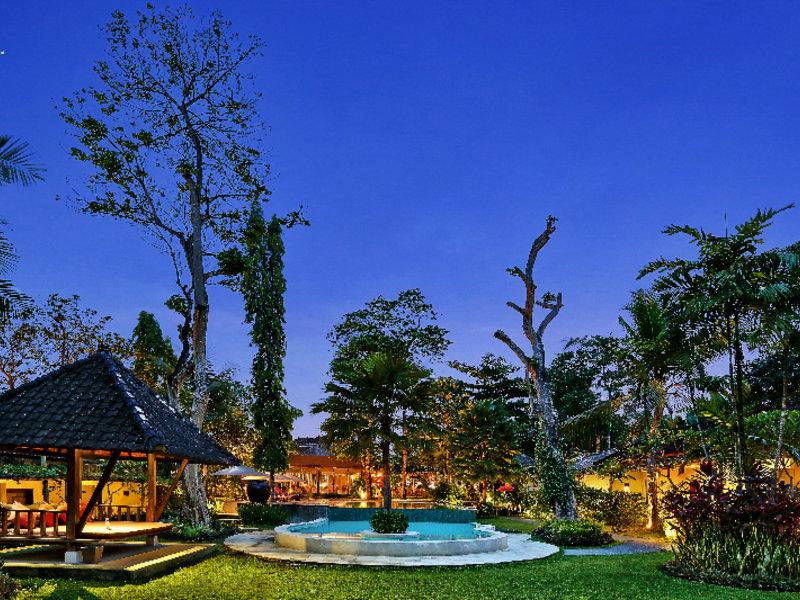 Y Resort Ubud Pool