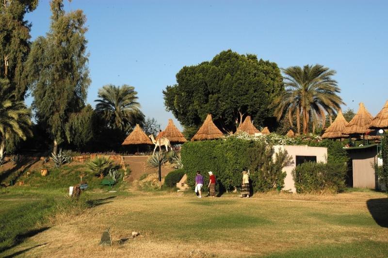 Jolie Ville Kings Island Luxor Tiere
