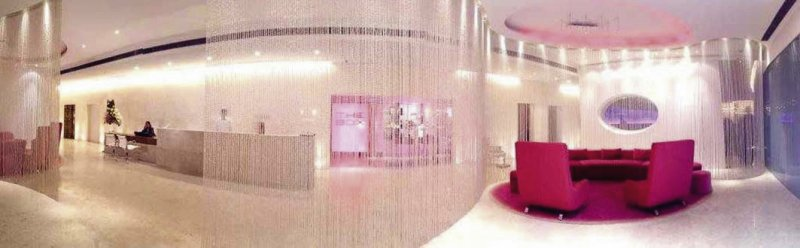 The Park Hotel New Delhi Lounge/Empfang
