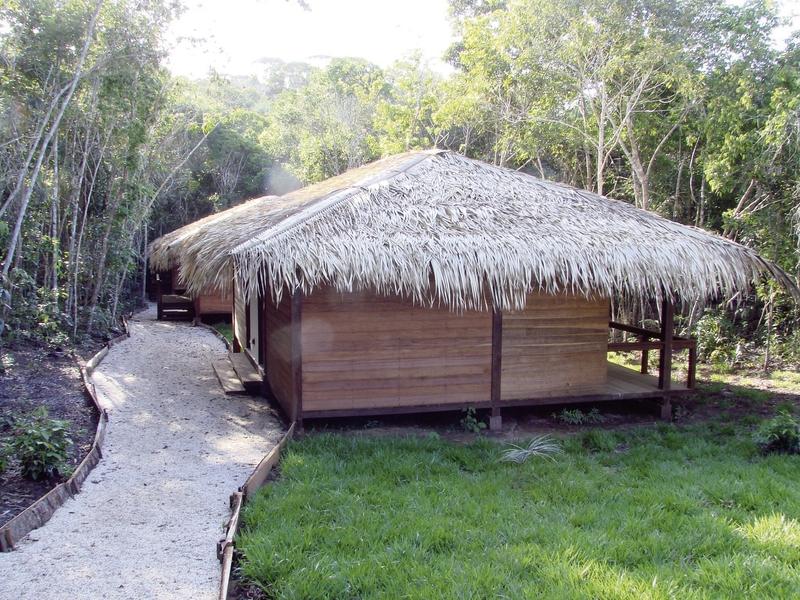 Anavilhanas Jungle Lodge Tiere